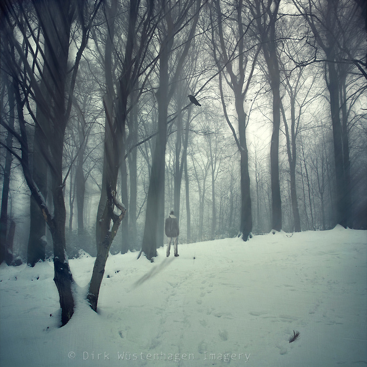 mann in verschneitem Wald, digital manipulierte Fotografie, Wuppertal, Deutschland