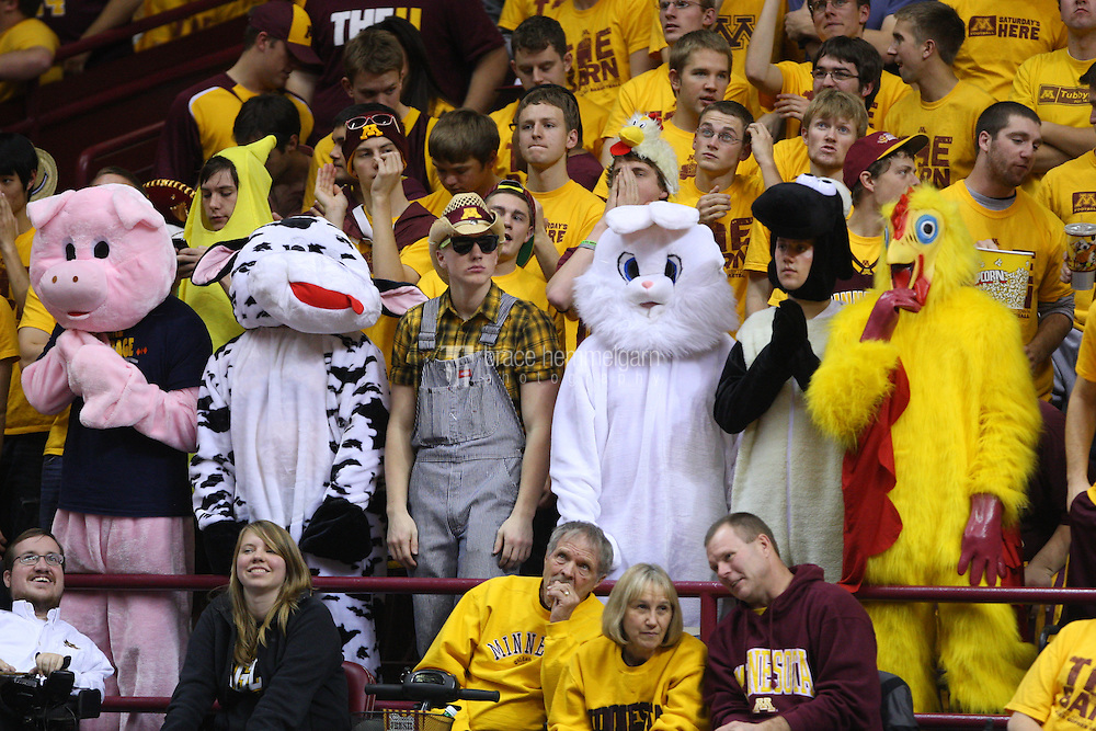 30 November 2011: Minnesota Golden Gophers student section featuring farm animals against the Virginia Tech Hokies at Williams Arena in Minneapolis, MN. Minnesota defeated Virginia Tech 58-55.