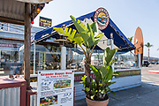 Rockin' Baja Coastal Cantina at Oceanside Harbor