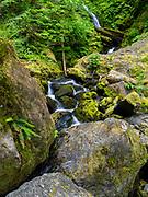 A waterfall on an overcast day near Lake Quinault, Washington, USA.