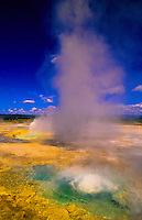 Fountain Paint Pot, Yellowstone National Park, Wyoming USA
