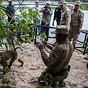 Cambodia, 2014. Animals are seized from poachers and rescued.