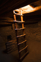 The entrance / exit  ladder in a kiva at Spruce Tree House in Mesa Verde National Park, Colorado, USA.