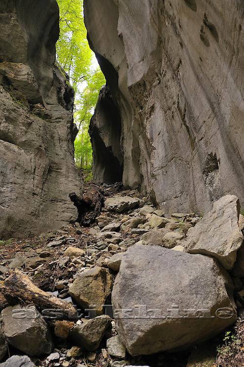 Rocks of Switzerland