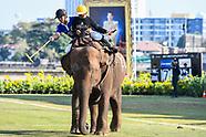 2017 Kings Cup Elephant Polo