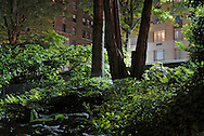 From Central Park, Manhattan.