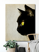 Most of us would love to be friends with all the animals of the world. It is easy to imagine anything in the Friendly Animals collection hanging in a personal or professional space<br /> #animals #wildlife #interioridea #homedecoration -<br /> BUY PRINTS OF THIS COLLECTION AT<br /> <br /> FINE ART AMERICA<br /> ENGLISH<br /> https://janke.pixels.com/<br /> <br /> WADM / OH MY PRINTS<br /> DUTCH / FRENCH / GERMAN<br /> https://www.werkaandemuur.nl/index/shop/nl/Jan-Keteleer/shop/1846