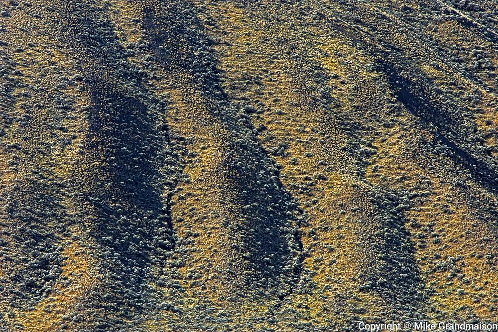 Grasslands. Thompson Valley, Kamloops, British Columbia, Canada