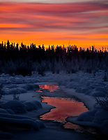 A freezing-cold dawn is made warmer by the Yukon's beautiful colours.