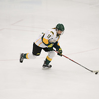1st year forward Martina Maskova (11) of the Regina Cougars in action during the Women's Hockey home game on January 20 at Co-operators arena. Credit: Arthur Ward/Arthur Images