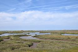 Coast north of Brancaster Staithe, north Norfolk coast August 2018
