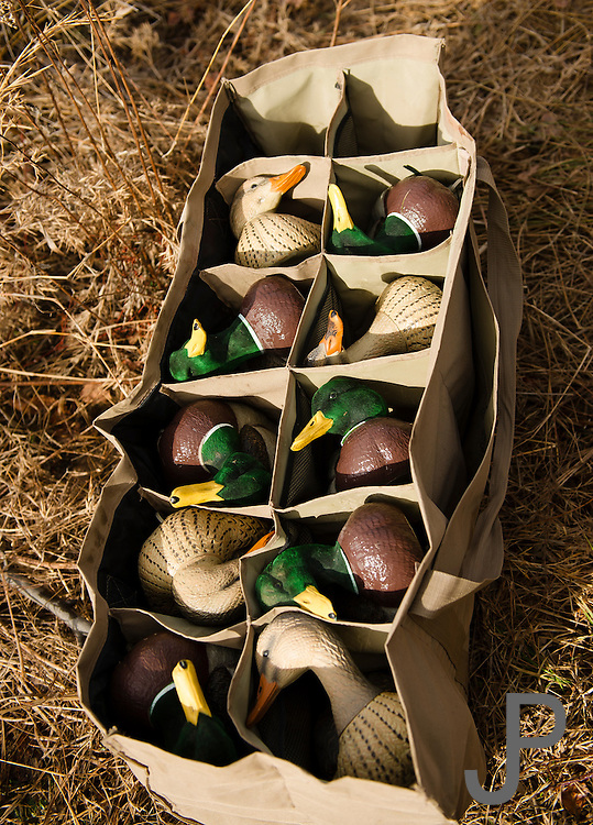 Decoys used while duck hunting in Shamrock, Oklahoma