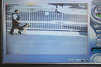 Guard with dog seen on picture from security camera