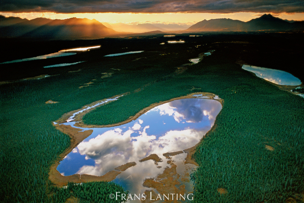 Clouds reflecting in lake (aerial), Chitina Valley, Wrangell-St. Elias National Park, Alaska