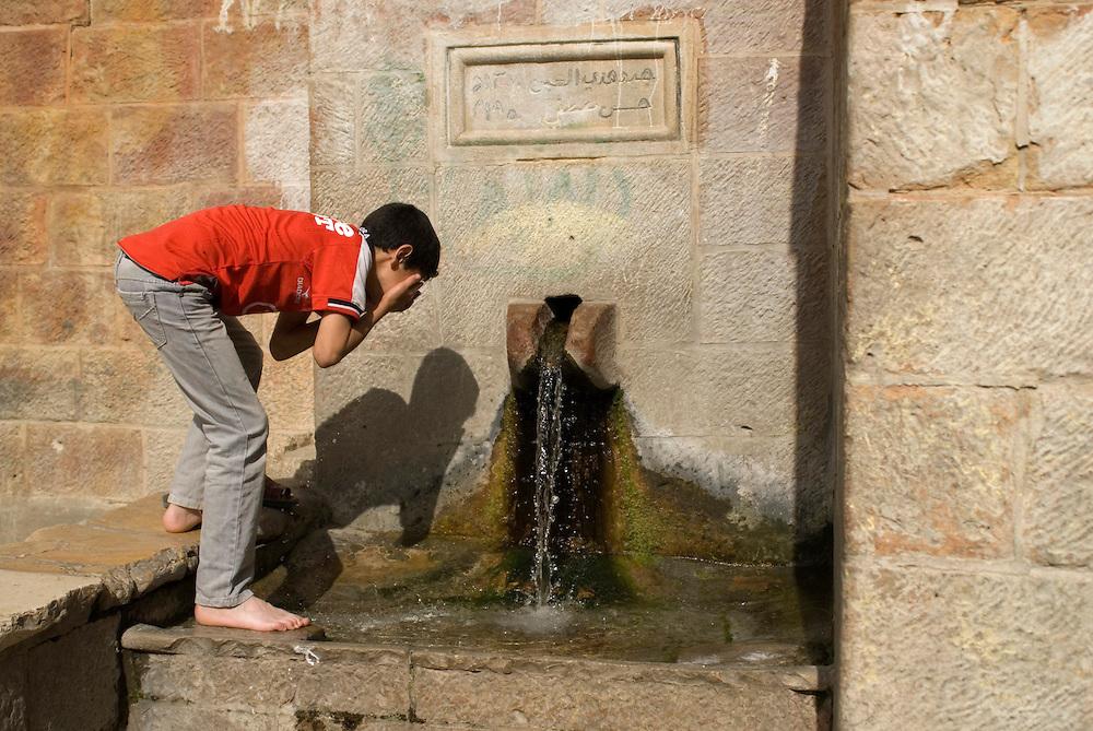 Source de Battir, partagée par les habitants du village. En 2011, Battir a reçu le prix Mélina Mercouri de l'UNESCO pour son agriculture en terrasses, patrimoine historique. Battir, ouest de Bethléem, Territoires Palestiniens, mai 2011