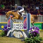 2016 Royal Horse Show