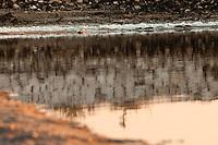 Il complesso produttivo delle saline è situato nel comune italiano di Margherita di Savoia (nome dato dagli abitanti in onore alla regina d'Italia che molto si adoperò nei confronti dei salinieri) nella provincia di Barletta-Andria-Trani in Puglia. Sono le più grandi d'Europa e le seconde nel mondo, in grado di produrre circa la metà del sale marino nazionale (500.000 di tonnellate annue).All'interno dei suoi bacini si sono insediate popolazioni di uccelli migratori e non, divenuti stanziali quali il fenicottero rosa, airone cenerino, garzetta, avocetta, cavaliere d'Italia, chiurlo, chiurlotello, fischione, volpoca..Riflesso nel bacino della sponda in pietra