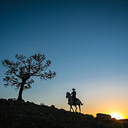 Last Light, CM Ranch, Wyoming
