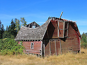 Old collapsing barn, Bothell, Washington, USA