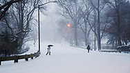 Snow storm at the east drive in Central Park, New York City