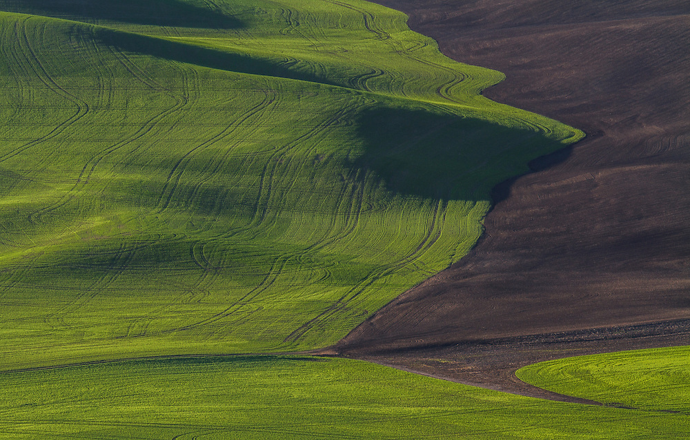 The colored fields of the Palouse region in Southeastern Washington are a sight to see.  Endless lines and colors are everywhere.