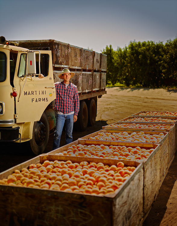 Peach farmer standing by his truck loaded full of fresh peaches in California shot as a Environmental Portraiture on a PhaseOne IQ180
