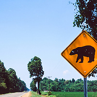 This Bear Crossing sign gives warning that bears are back in the Mississippi Delta.