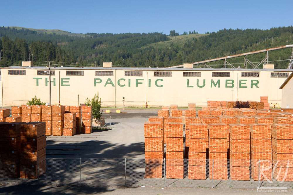 Pacific Lumber Company With Clearcut Redwood Forests Behind the Mill, Scotia, California