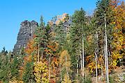 Felsen im Bielatal, Sächsische Schweiz, Elbsandsteingebirge, Sachsen, Deutschland | rocks in Bielatal, Saxon Switzerland, Saxony, Germany
