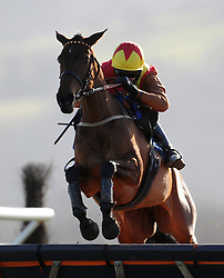 Race Winner Midnight Jazz ridden by Daryl Jacob jumps the last during the British Stallion Studs Ebf Mares' 'national Hunt' Novices' Hurdle (Class 4) (4YO plus) - Photo mandatory by-line: Harry Trump/JMP - Mobile: 07966 386802 - 17/02/15 - SPORT - Equestrian - Horse Racing - Taunton Racecourse, Somerset, England.
