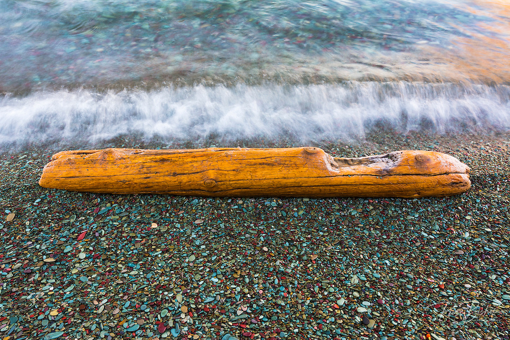 Driftwood detail, St. Mary Lake, Glacier National Park, Montana USA
