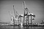 San Pedro, Wilmington, and Terminal Island are the locations of the Port of Los Angeles.