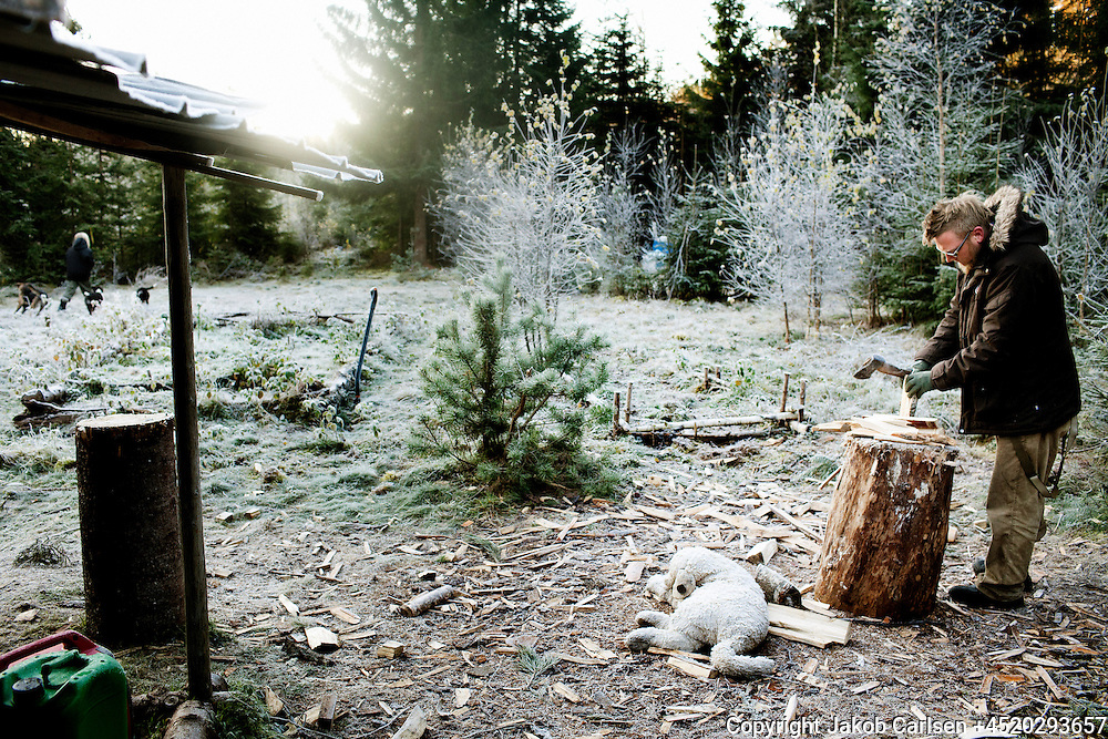 A danish family has moved deep into the Swedish woods to build their own house. Jeppe is chopping wood.