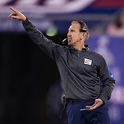 Oct 25, 2015; East Rutherford, NJ, USA; New York Giants Defensive Coordinator Steve Spagnulo pointing at MetLife Stadium. Mandatory Credit: William Hauser-USA TODAY Sports