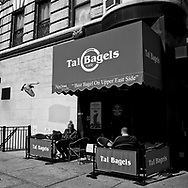 A pigeon about to land on a terrace at Tal Bagels on Lexington Avenue and 83rd street.