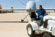 29 SEPTEMBER 2005 - SIERRA VISTA, AZ: A contract worker tows a US Customs and Border Protection Predator to the flight line at Ft. Huachuca, in Sierra Vista, AZ. The Predator is an Unmanned Aerial Vehicle used by the Border Patrol for surveillance along the Arizona stretch of the US/Mexico border. The aircraft are flown along the US Mexico border by US Border Patrol agents based in Texas and Arizona.  The U.S. Customs and Border Protection (CBP) agency flies thePredator drones at an altitude of 15,000 feet for policing immigration, drug smugglers and terrorists along the U.S.-Mexico border.    PHOTO BY JACK KURTZ