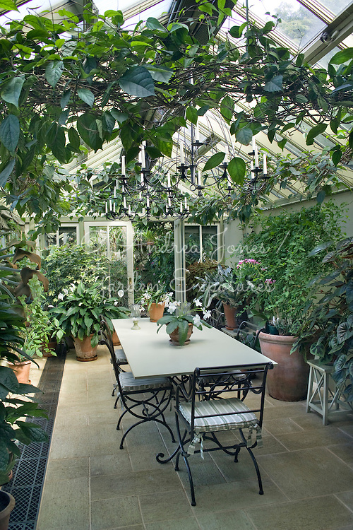 Conservatory interior showing table and chairs and tropical plants in containers<br /> <br /> &copy;Andrea Jones / Garden Exposures Photo Library