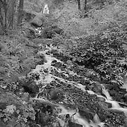 Wahkeena Falls And Lower Stream - Columbia Gorge, Oregon - Black & White