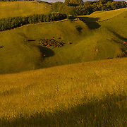 Late summer light over the hills above the Scottish Border town of Selkirk