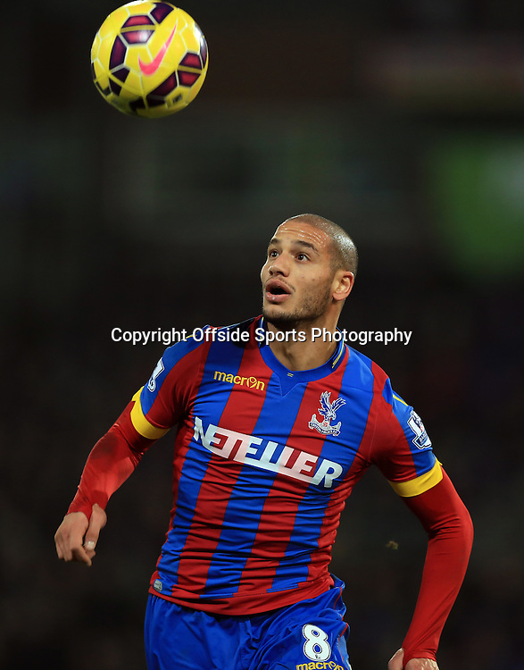 10 January 2015 - Barclays Premier League - Crystal Palace v Tottenham Hotspur - Adiene Guedioura of Crystal Palace - Photo: Marc Atkins / Offside.