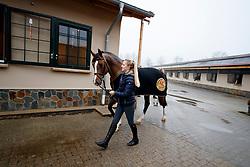 Justine TEBBEL, Light Star<br /> Emsbüren - Gestütsportrait Hengststation Tebbel 2017   <br /> © www.sportfotos-lafrentz.de/Stefan Lafrentz