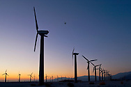 Jet flying over Array of Clean Energy Power generating windmills at wind farm at sunrise, Palm Springs, Riverside County, California