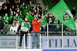 Fans of Olimpija celebrate during ice-hockey match between HDD Tilia Olimpija and EHC Liwest Black Wings Linz in 51st Round of EBEL league, on Februar 5, 2012 at Hala Tivoli, Ljubljana, Slovenia. (Photo By Matic Klansek Velej / Sportida)