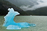 Deep blue iceberg in Endicott Arm fjord in Tracy Arm - Fords Terror Wilderness in the Inside Passage of Southeast Alaska. Summer. Afternoon.