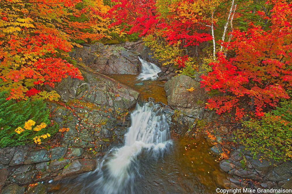 Morrison Brook and the Acadian forest in autumn foliage <br />Cape Breton<br />Nova Scotia<br />Canada