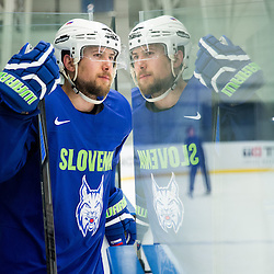 20150430: CZE, Ice Hockey - 2015 IIHF Ice Hockey World Championship, Team Slovenia at training