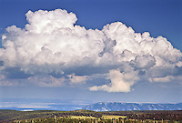Swelling Cumulus clouds over the Medicine Bow Mountains.  Wyoming, USA.