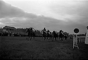"10/05/1965<br /> 05/10/1965<br /> 10 May 1965<br /> Col. J. Reid's ""Ticonderoga"", left, wins the Kingsway Amateur Handicap Hurdle with ""Shannon Shamrock"" and ""Belle Artiste"" close behind at the Leopardstown Races on May 10, 1965."