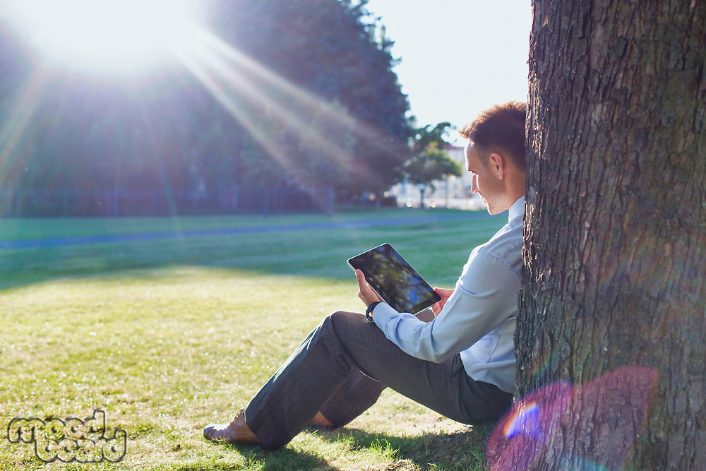 Mature businessman sitting under the tree while using digital tablet