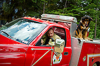 Kootenai County firefighter Jeryl Archer backs up a truck while a dog rides on the back. The dog belongs to the owner of the Blossom Mountain home that was destroyed by fire Thursday. It was one of two protective dogs that interfered with Kootenai County Sheriff deputies that were trying to detain their owner.